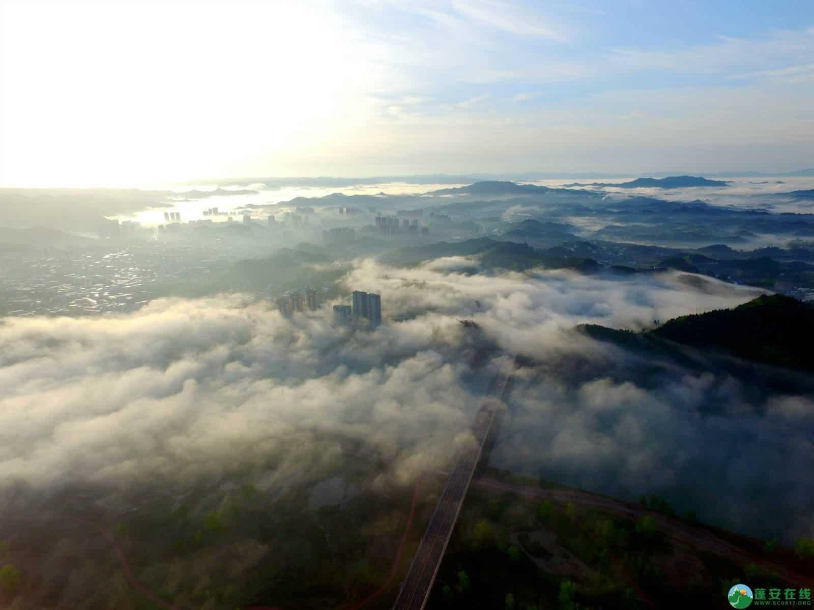 雾境蓬安 - 第15张  | 蓬安在线