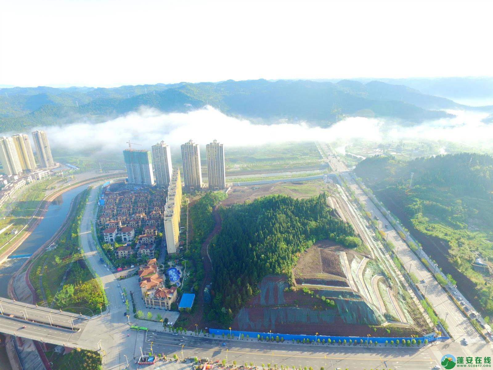 雾境蓬安 - 第32张  | 蓬安在线