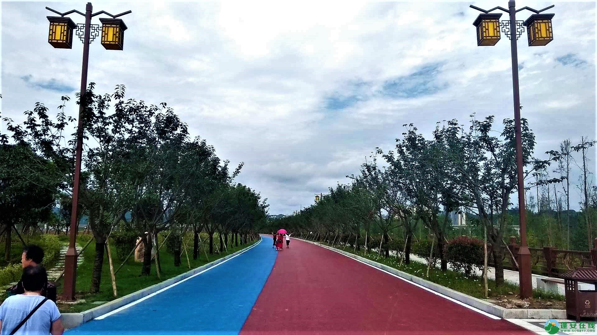 蓬安锦屏新区建设进度一览(2019年06月29日) - 第23张  | 蓬安在线