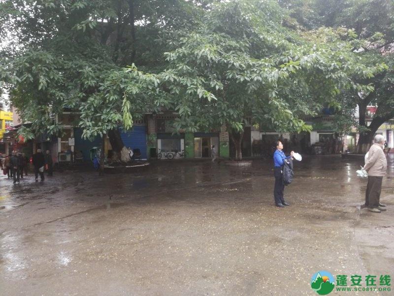 蓬安综合执法局等多部门联合整治老广场成效显著 - 第4张  | 蓬安在线