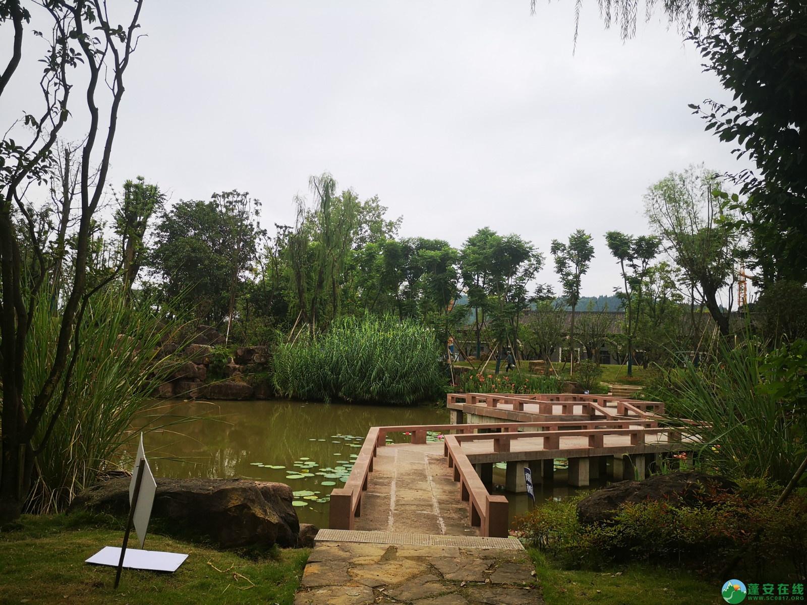 蓬安锦屏新区近况(2020-08-19) - 第2张  | 蓬安在线